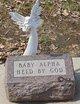 Profile photo:  Baby Alpha