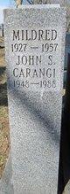 Profile photo:  John S. Carangi