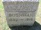 Profile photo:  Adelaide L. <I>Brainard</I> Bushman