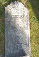 Sylvia P Trickey