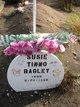Profile photo:  Susie <I>Tinno</I> Bagley