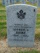Alfred Anthony Dube