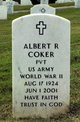 Profile photo:  Albert R Coker
