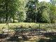 Briggs Family Cemetery (Village View)
