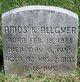 Profile photo:  Amos K. Allgyer