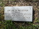 Archie Arthur McLester