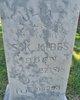 Julia Ann <I>Ogle</I> Hibbs