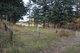 Indian Park Cemetery