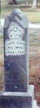 Eliza a <I>Earp</I> Dazey