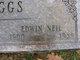 Edwin Neil Griggs