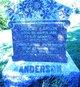 Anders Larson Anderson