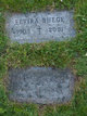 Elvira Clara <I>Rose</I> Buege