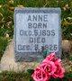 Profile photo:  Anne <I>Olson</I> Fauske