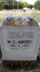 Wyllis Cecil Ament