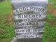 Profile photo:  Adolphus Niblock
