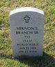 Profile photo:  Vernon L Branch, Sr