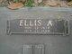 Profile photo:  Ellis Alton King