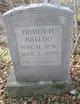 Profile photo:  Homer Horatio Ballou