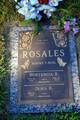 Hortencia R Rosales
