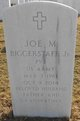Profile photo:  Joe M Biggerstaff, Jr