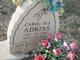Profile photo:  Carol Sue Adkins