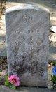 Profile photo:  Charlie Lee Adams, Sr