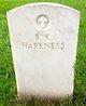 Profile photo:  B K Harkness