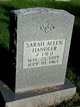 Profile photo:  Sarah Allen Handler