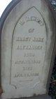 Nancy Jane Alexander