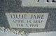 Lillie Jane <I>Jones</I> Allred