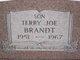 Terry Joe Brandt