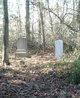 Thomas Coghill Reavis Cemetery