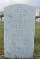 Arnold E. Mueck