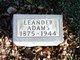 Profile photo:  Leander Adams