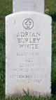 Profile photo:  Adrian Burley White