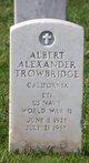 Profile photo:  Albert Alexander Trowbridge