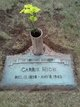 "Caroline ""Carrie"" <I>Wheeler</I> High"