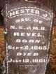 Hester J Revel