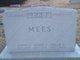 Philip George Mees