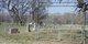 New Knobbs Springs Cemetery