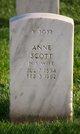 Profile photo:  Anne Scott Trowbridge