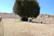 Absher Family Cemetery (Road Ridge)
