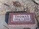 Thomas George Ray