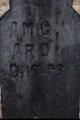 "Profile photo:  A. M. C. ""Amos"" Ard"