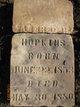 Alfred Reuben Hopkins