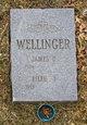 James D Wellinger