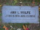 Ann L Wolfe