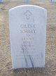 Giles Elrod Sorley Sr.