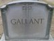 Profile photo:  Gallant