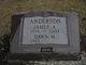 James Allen Anderson